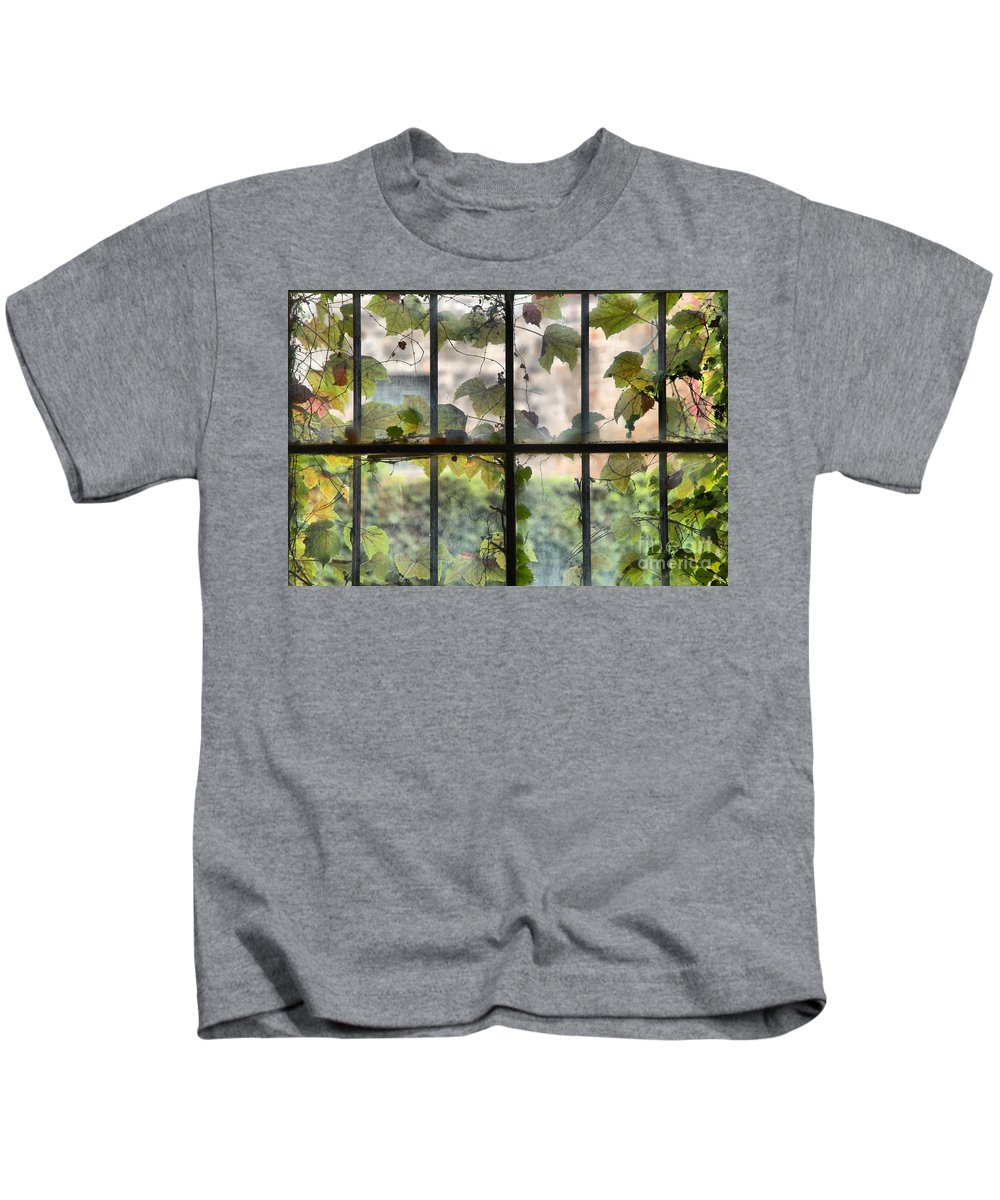 Jail Cell Window Kids T-Shirt featuring the photograph Fog Ivy And Plate Glass by Adam Jewell