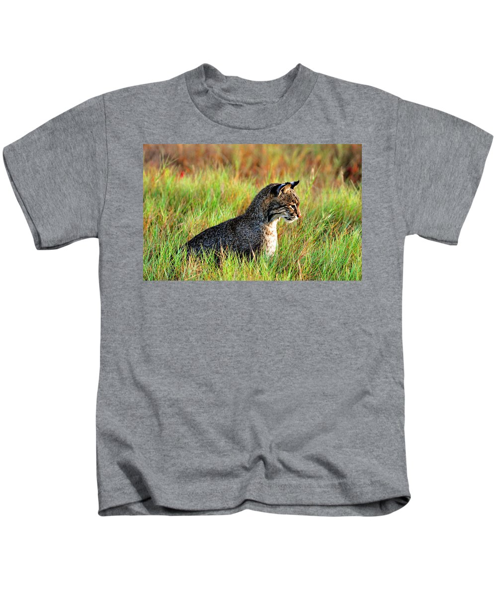 Bob Cat Kids T-Shirt featuring the photograph Food In Sight by Davids Digits