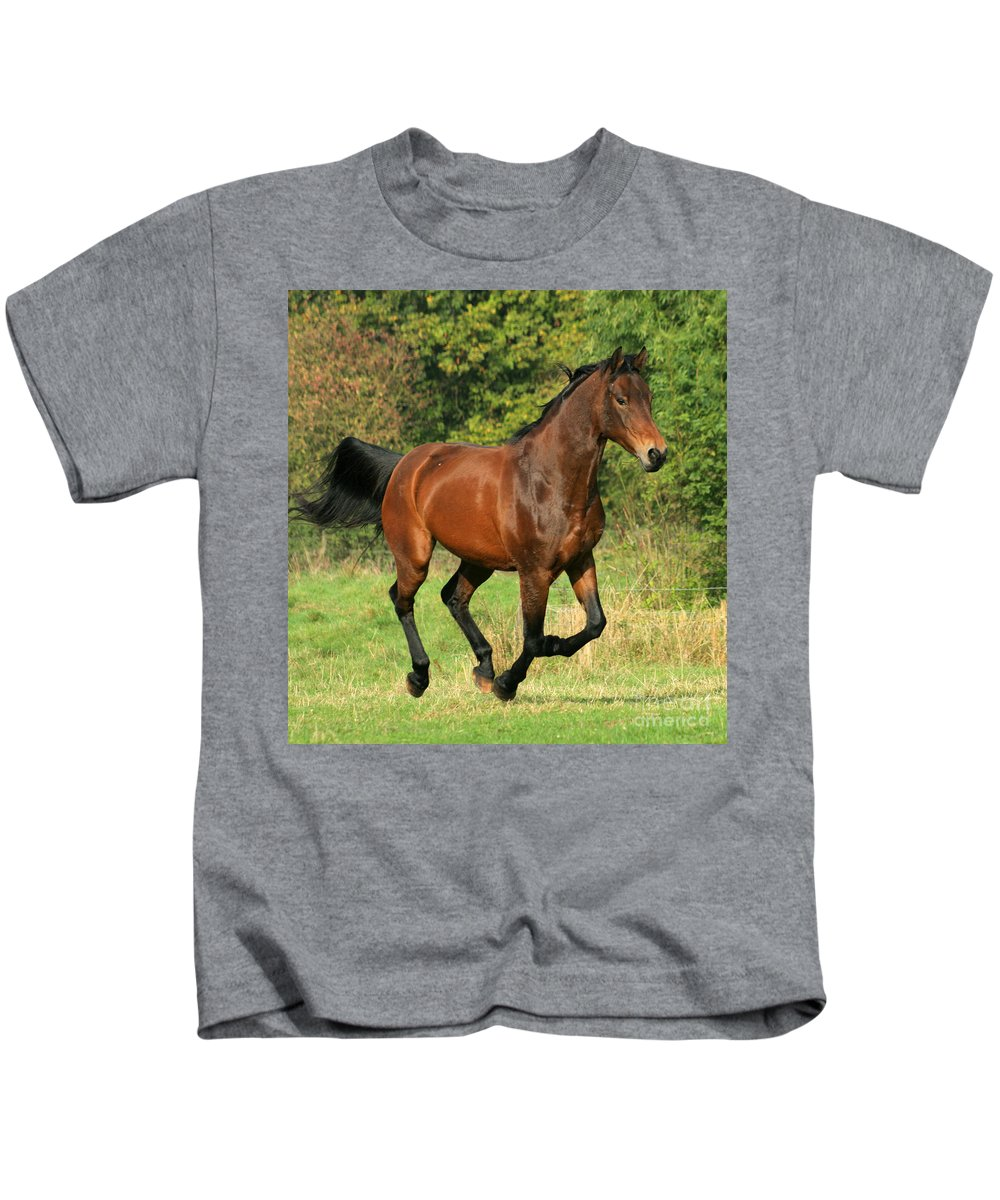 Horse Kids T-Shirt featuring the photograph Gallop by Angel Ciesniarska