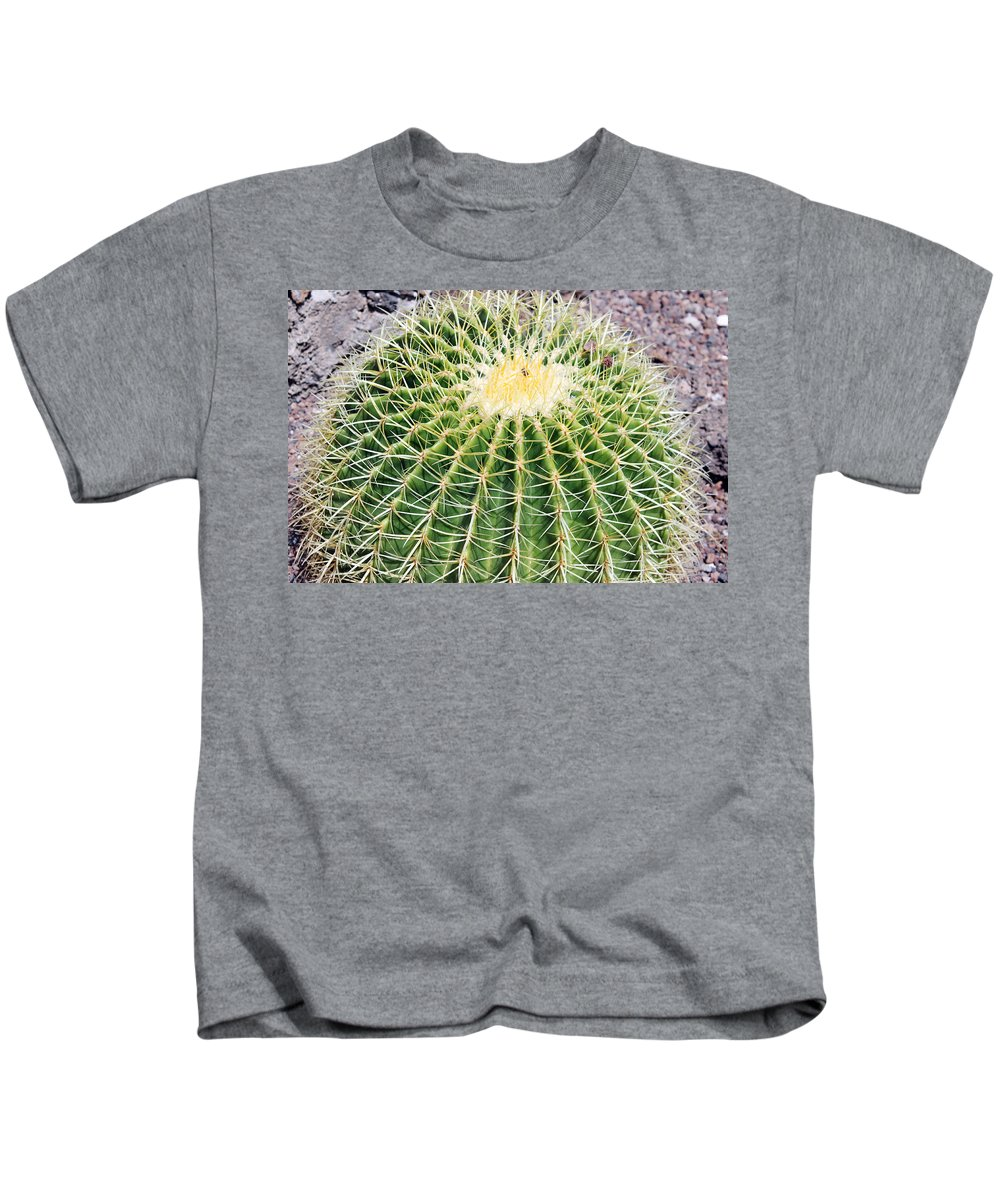 Cactus Kids T-Shirt featuring the photograph Golden Ball Cactus by Tony Murtagh