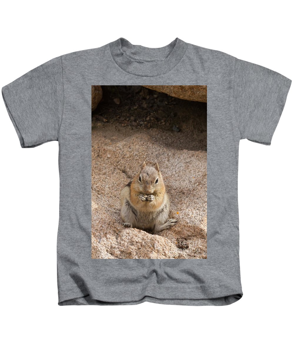 Afternoon Kids T-Shirt featuring the photograph Golden Mantle Ground Squirrel Hidden Valley Rock Mountain Nation by Fred Stearns