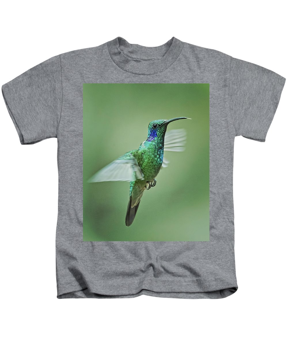 Bird Kids T-Shirt featuring the photograph Green Violetear Hummer Beauty by Leslie Reagan - Joy To The Wild Photos