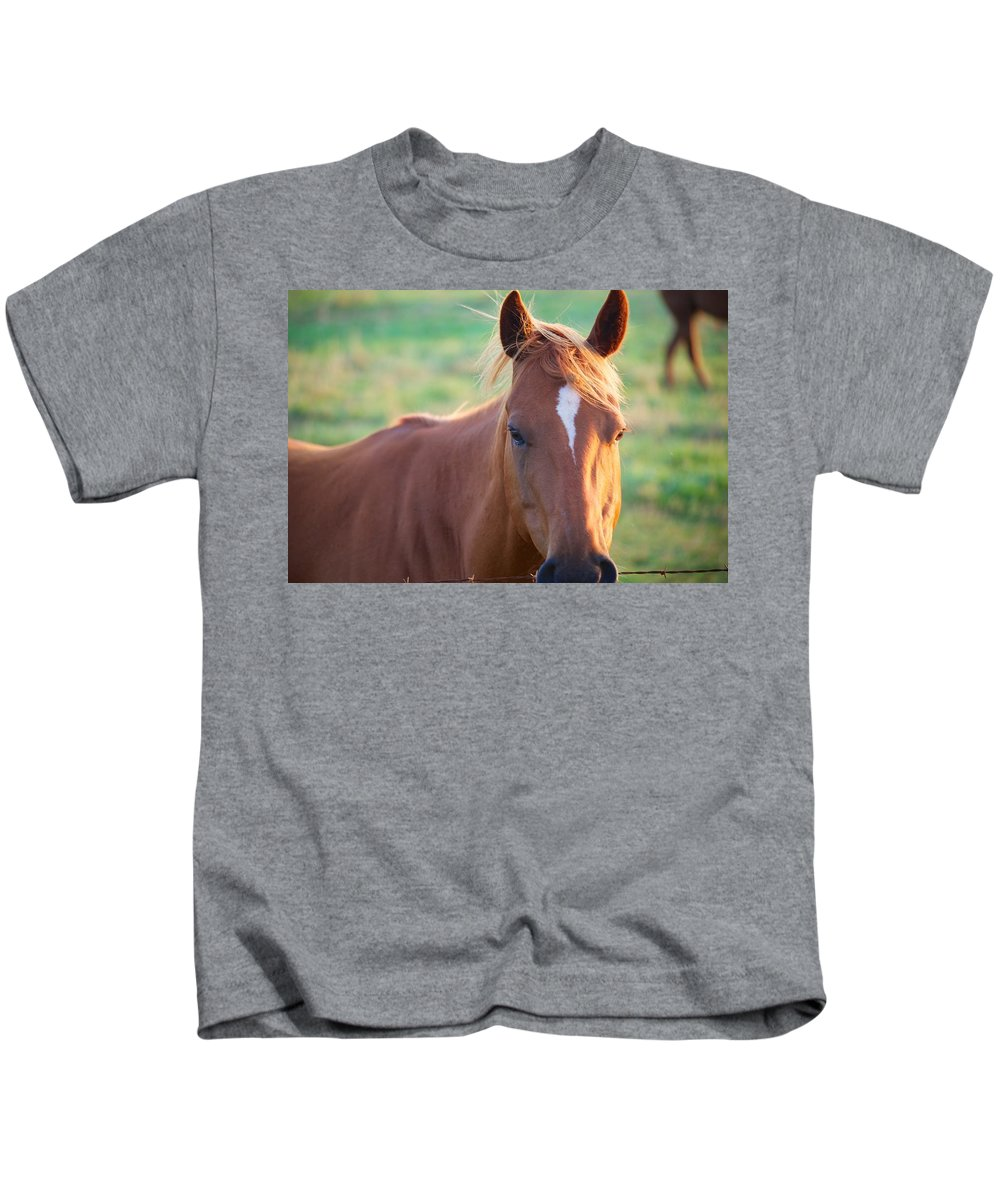 Horse Kids T-Shirt featuring the photograph Horse Face by Allan Morrison