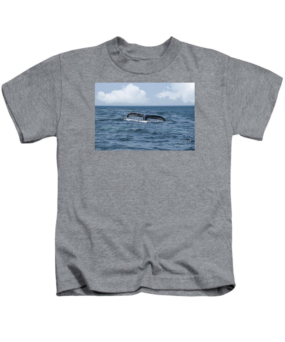 America Kids T-Shirt featuring the photograph Humpback Whale Fin by Juli Scalzi