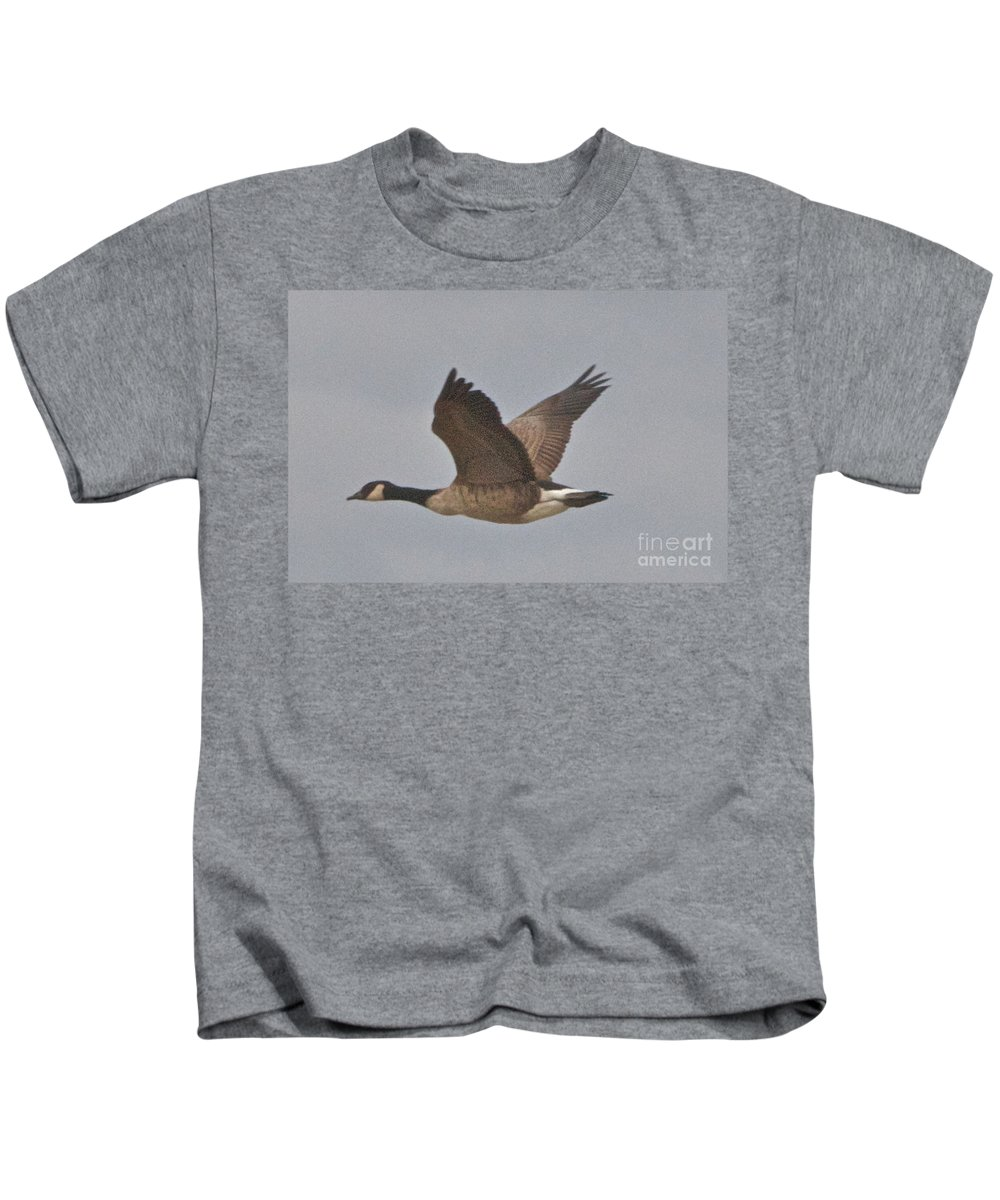 Canadian Geese Kids T-Shirt featuring the photograph In Flight by William Norton
