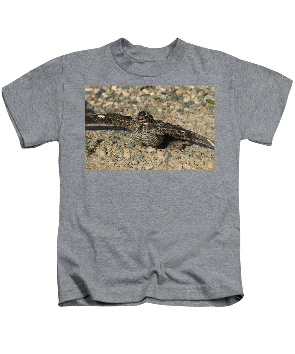Peterson Nature Photography Kids T-Shirt featuring the photograph Industrial Nighthawk by James Peterson