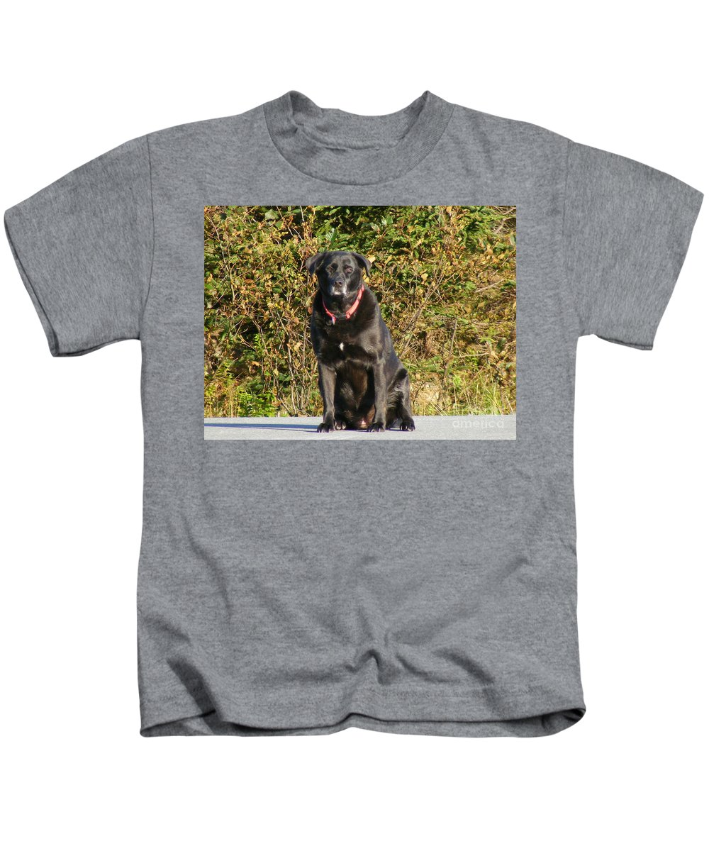 Labrador Retriever Kids T-Shirt featuring the photograph Labrador Retriever by Barbara Griffin