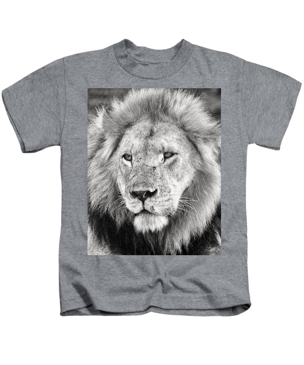 3scape Kids T-Shirt featuring the photograph Lion King by Adam Romanowicz