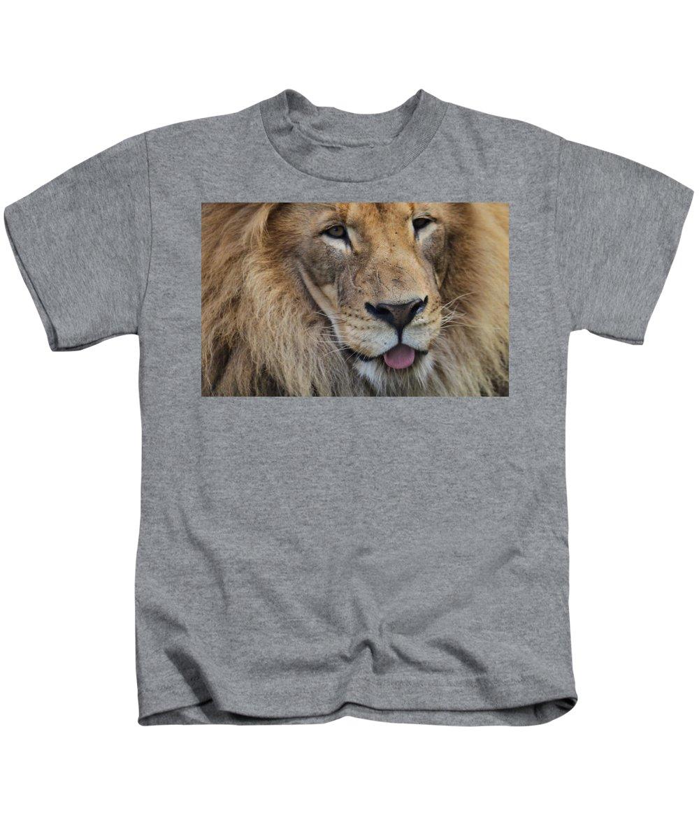 Lion Portrait Panting Kids T-Shirt featuring the photograph Lion Portrait Panting by Dan Sproul