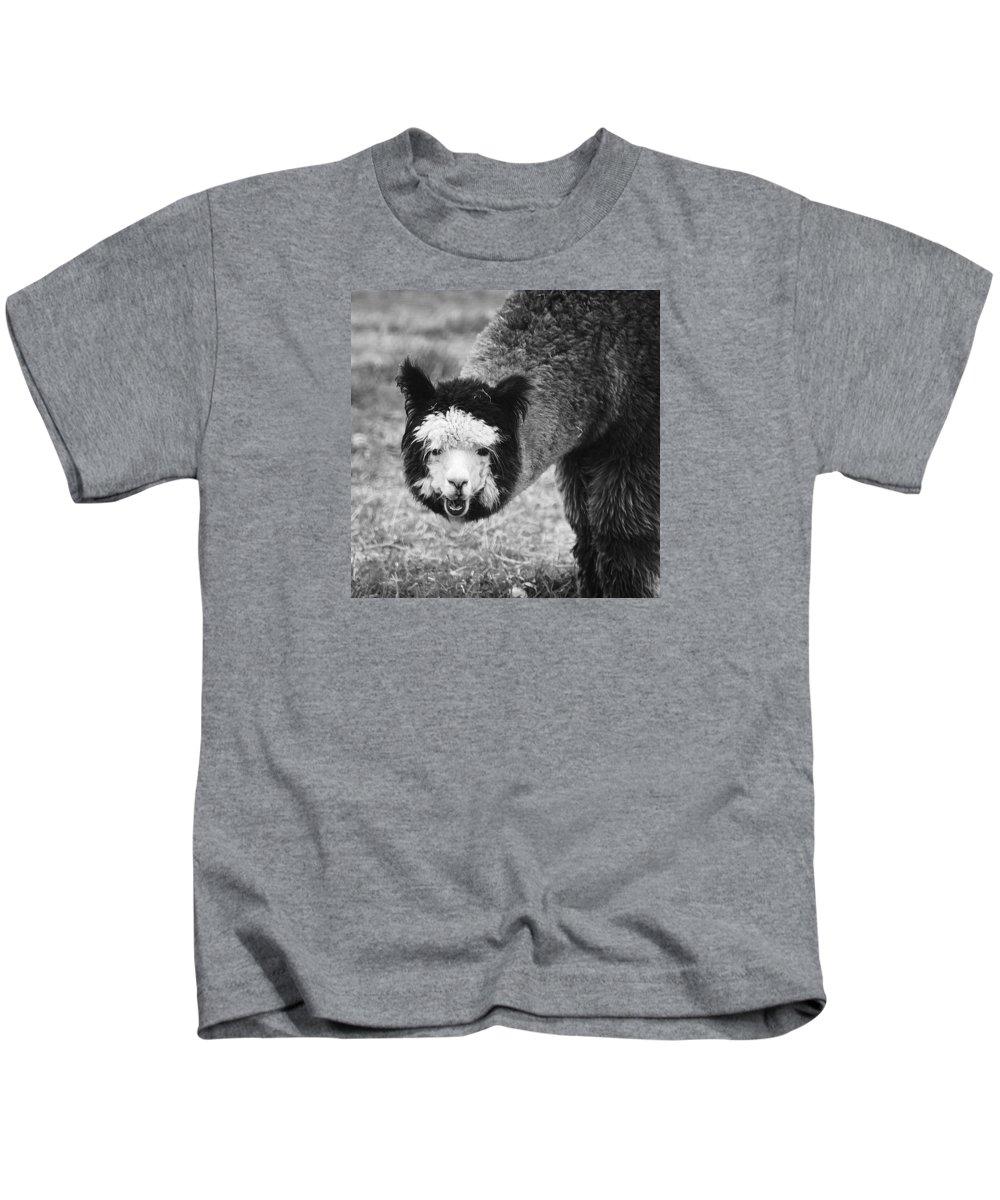 Animals Kids T-Shirt featuring the photograph Llama by Yulia Kazansky