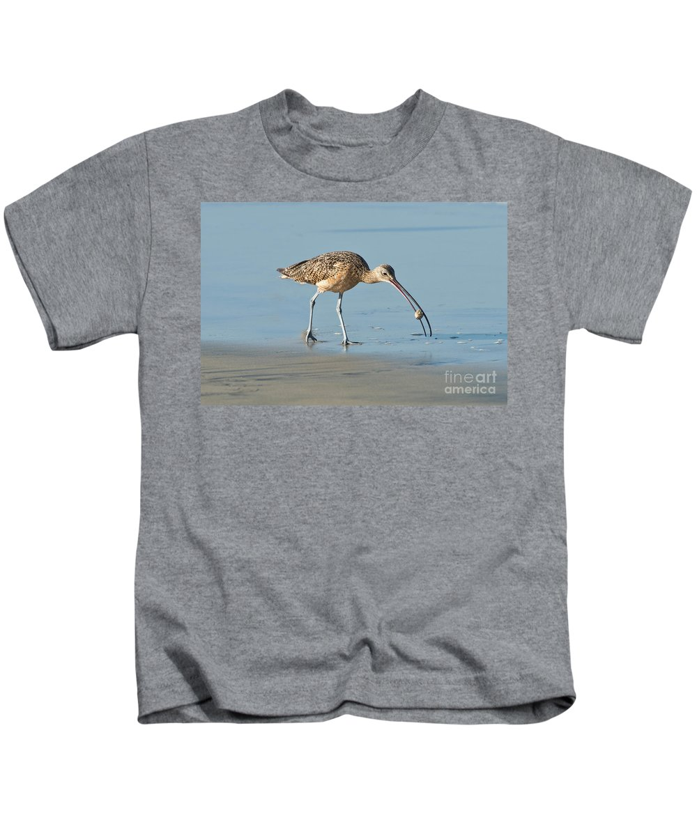North American Kids T-Shirt featuring the photograph Long-billed Curlew Catching Crab by Anthony Mercieca