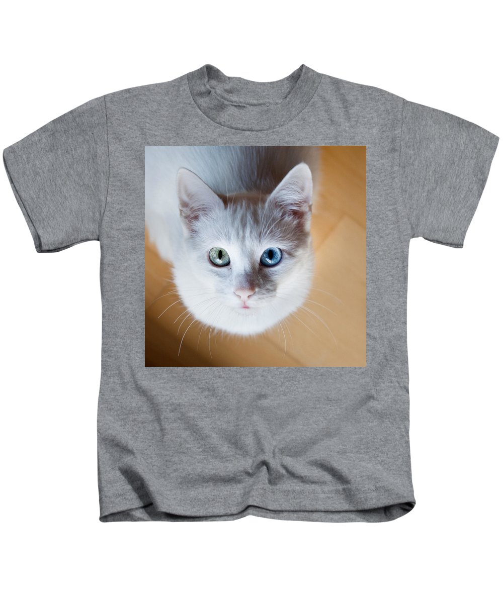 Cat Kids T-Shirt featuring the photograph Looking Up by Jorge Maia