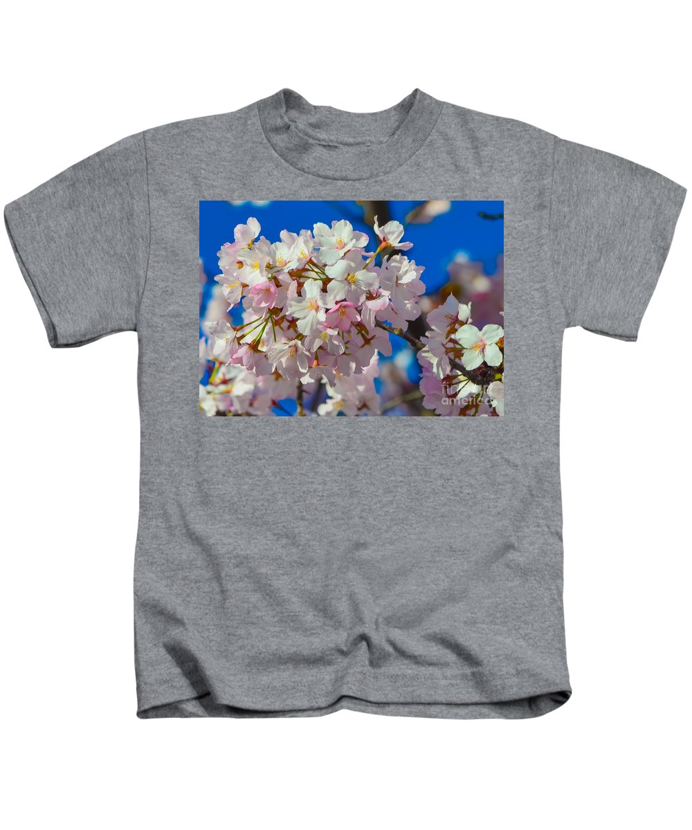 2012 Centennial Celebration Kids T-Shirt featuring the photograph Macro Dc Cherry Blooms by Jeff at JSJ Photography