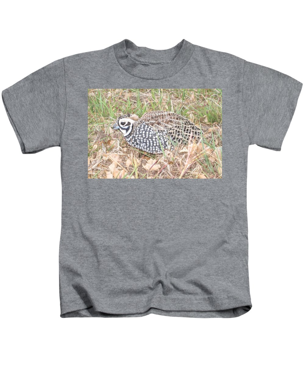 Male Kids T-Shirt featuring the photograph Male Montezuma Quail 5-6-14 by Renny Spencer