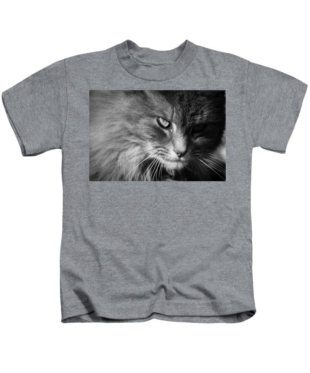 Black Kids T-Shirt featuring the photograph Moody Cat by Alexander Ferguson