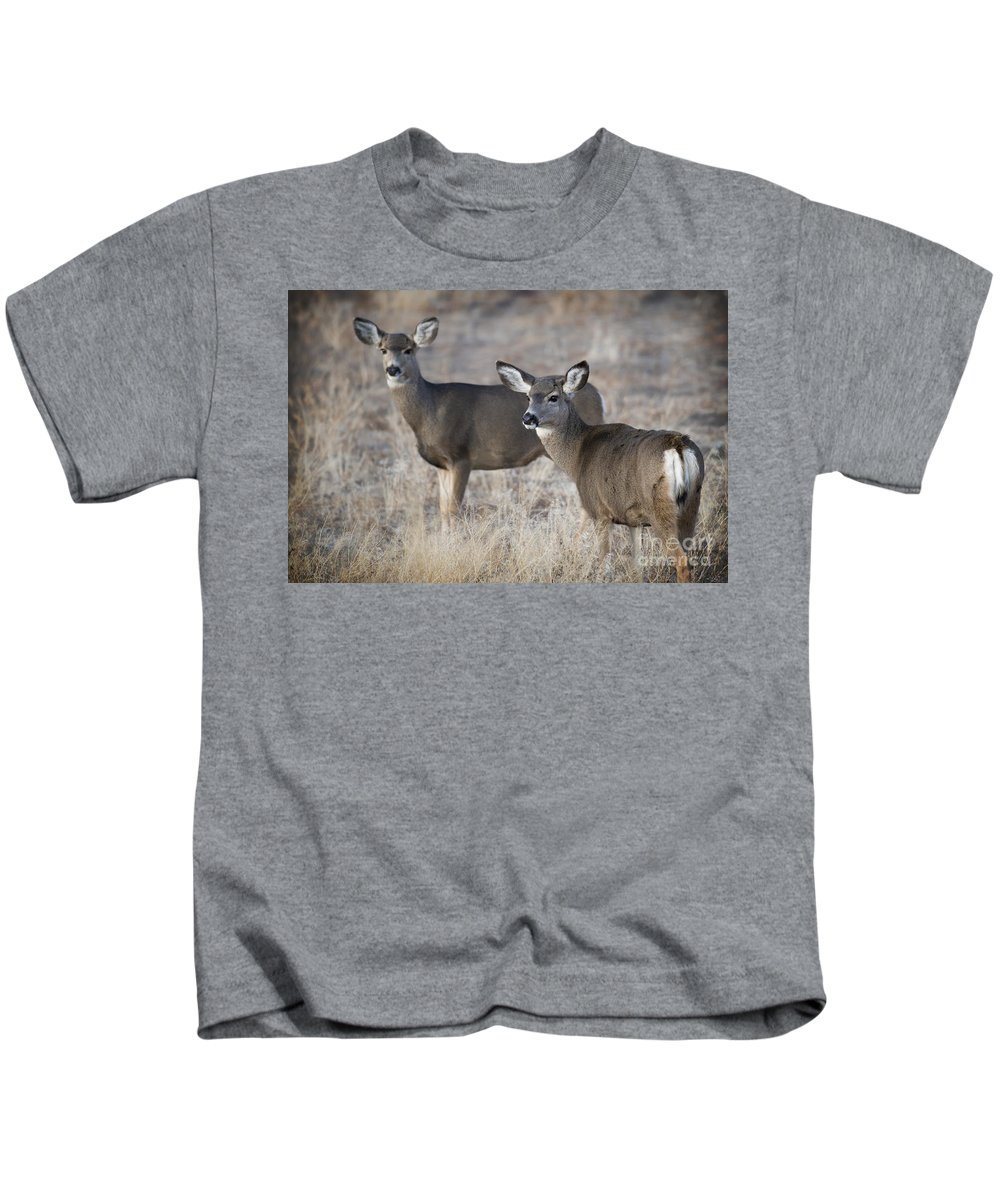 Deer Kids T-Shirt featuring the photograph Mule Deer Does by Dianne Phelps
