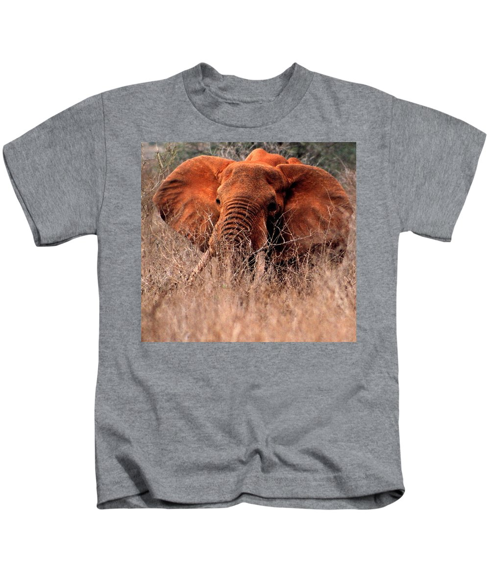 Wild Elephant Kids T-Shirt featuring the photograph My Elephant In Africa by Phyllis Kaltenbach