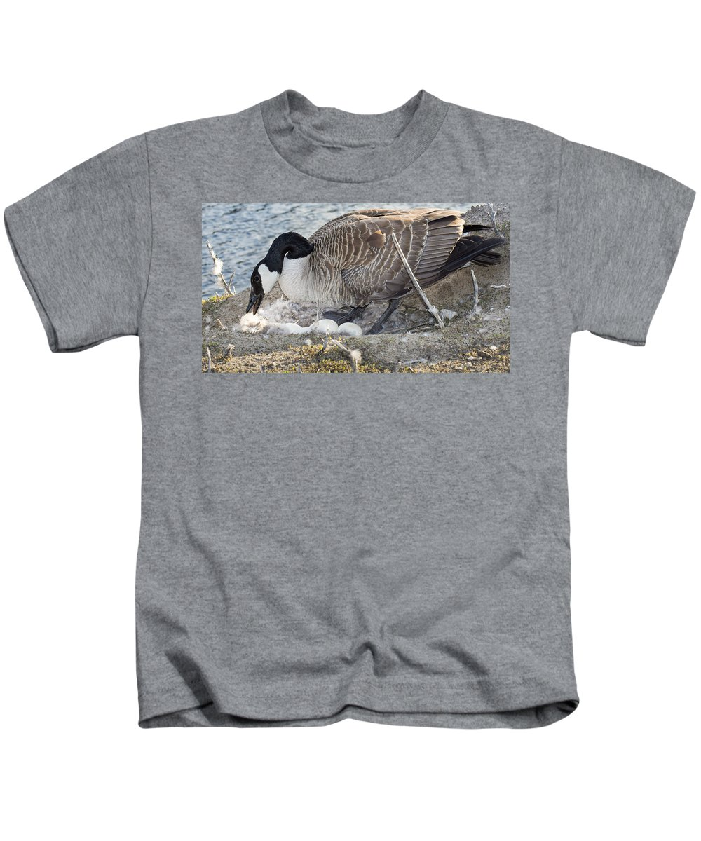 Bill Pevlor Kids T-Shirt featuring the photograph Nester by Bill Pevlor