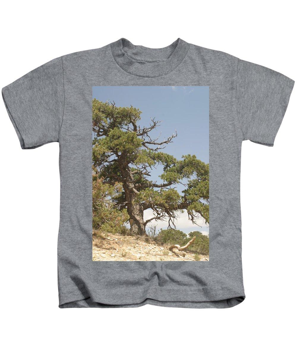 Mountain Kids T-Shirt featuring the photograph On A Mountain Top by Steve Scheunemann