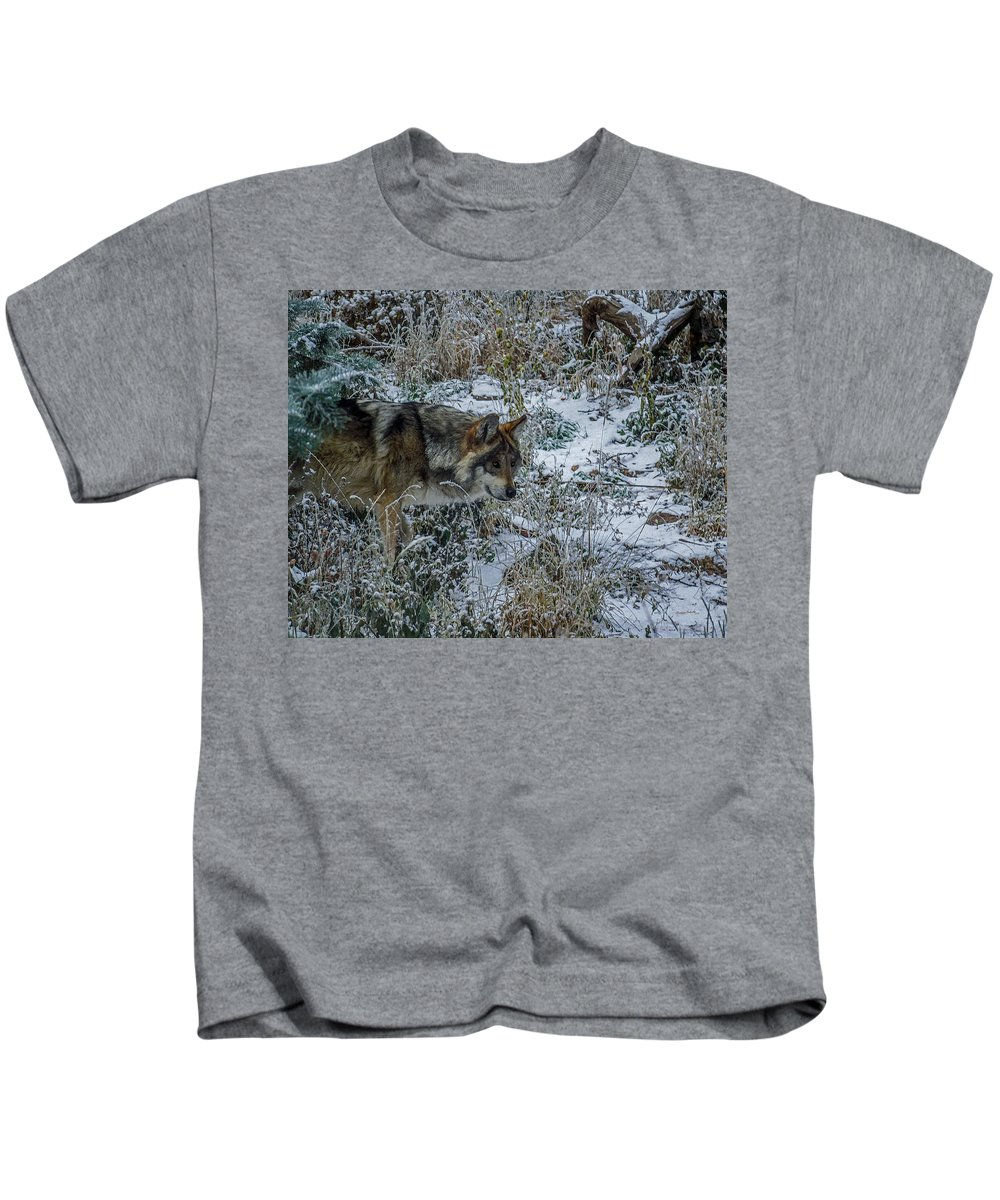 Wolf Kids T-Shirt featuring the photograph On The Move by Ernie Echols