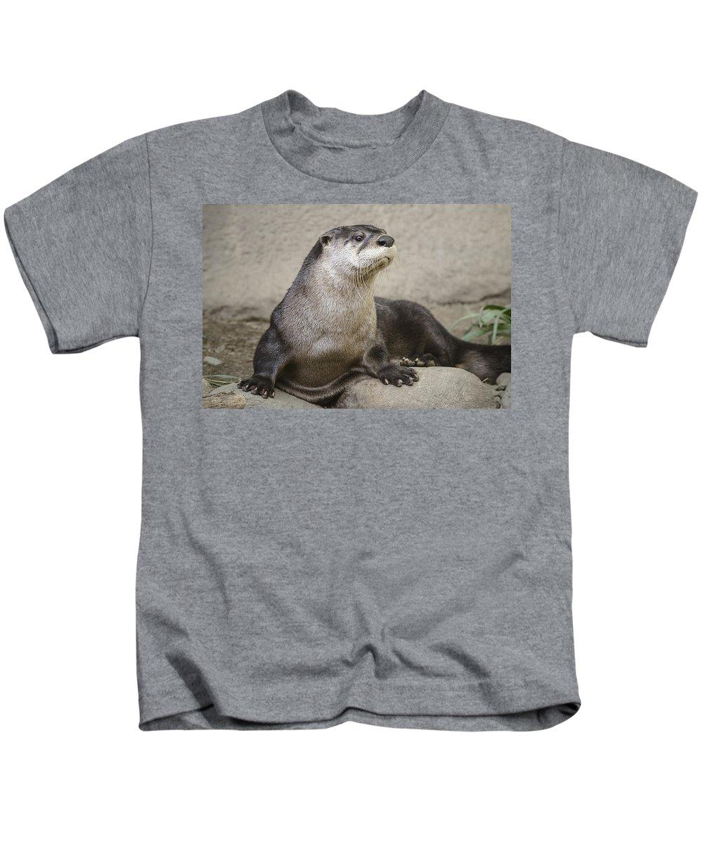 North American Kids T-Shirt featuring the photograph Otter North American by LeeAnn McLaneGoetz McLaneGoetzStudioLLCcom