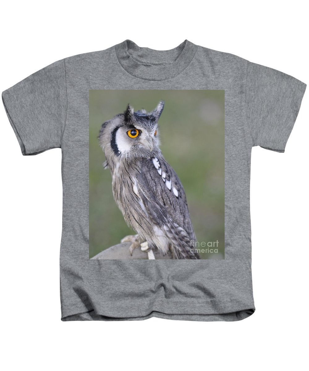 Owl Kids T-Shirt featuring the photograph Owl by Jenny Potter