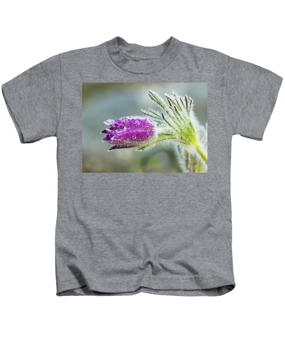 Pasque Kids T-Shirt featuring the photograph Pasque Flower by Mircea Costina Photography