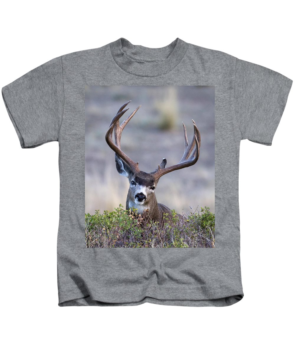 Mule Deer Kids T-Shirt featuring the photograph Peek A Boo by Jack Bell