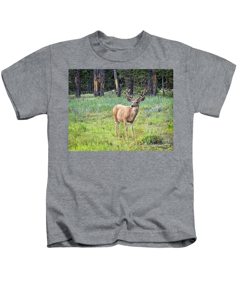 Antlers Kids T-Shirt featuring the photograph Posing by Claudia Kuhn