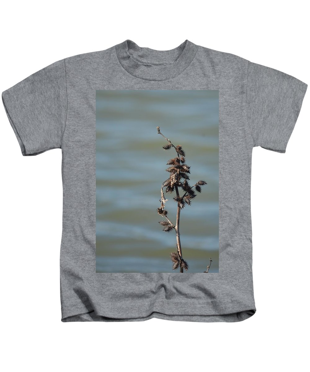 Prickly By Nature Kids T-Shirt featuring the photograph Prickly By Nature by Maria Urso