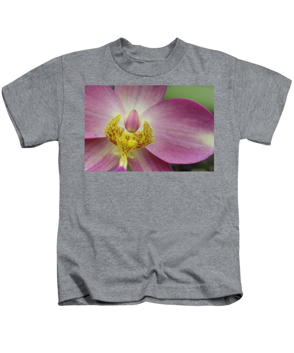 Orchid Kids T-Shirt featuring the photograph Purple And Yellow Orchid by Rudy Umans