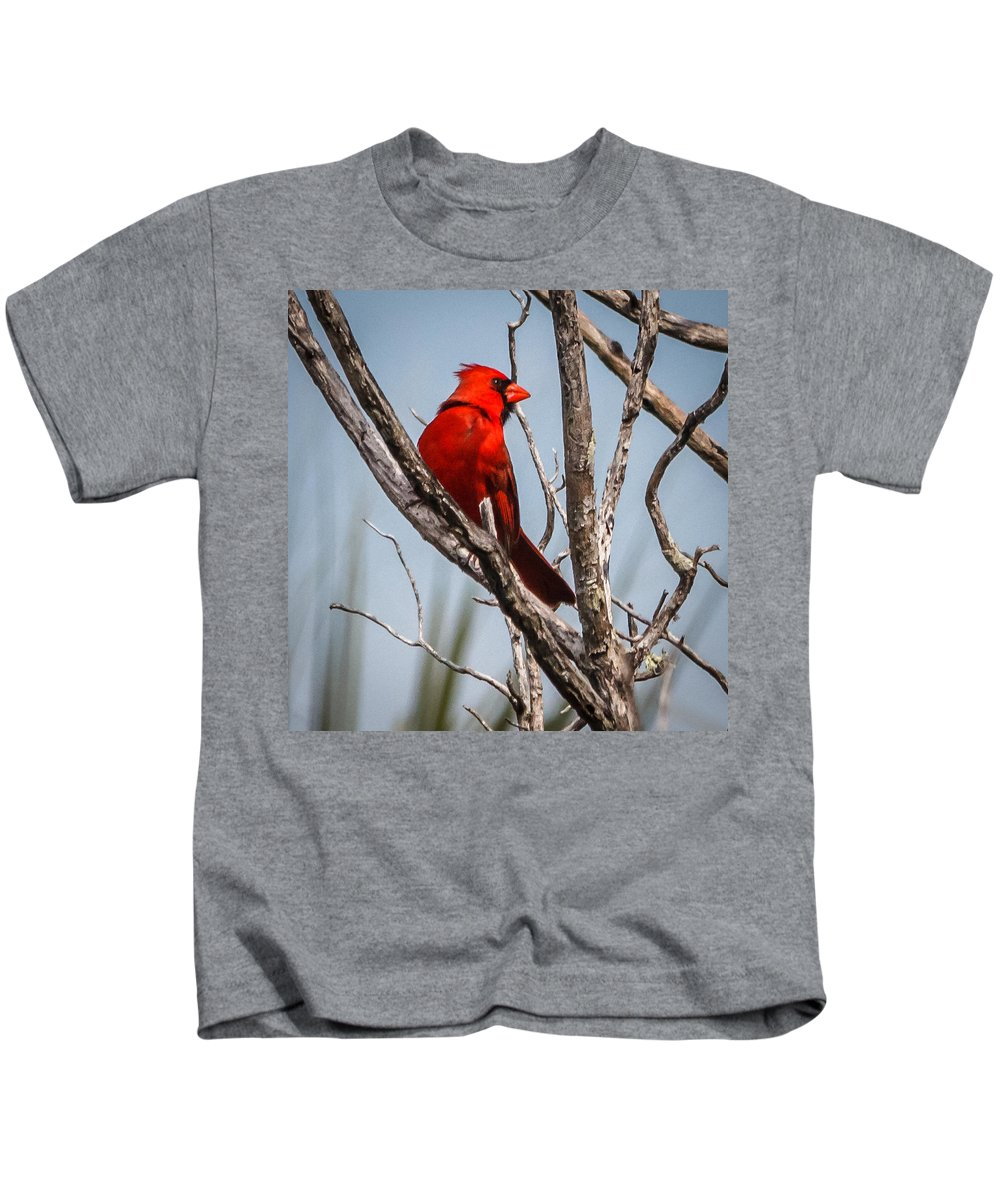Florida Kids T-Shirt featuring the photograph Red Cardinal by Jane Luxton