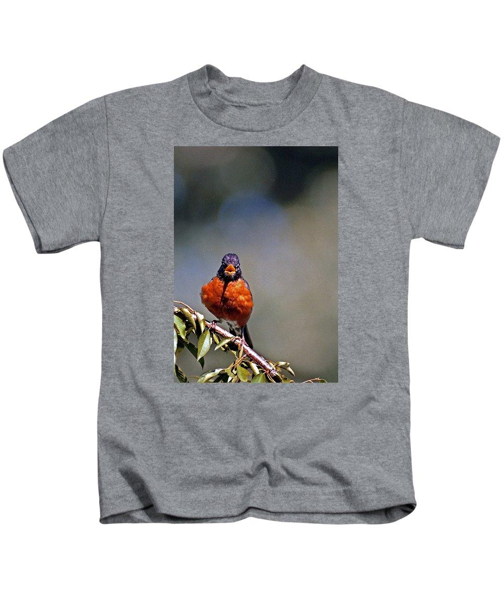 Bird Kids T-Shirt featuring the photograph Rockin Robin by Skip Willits