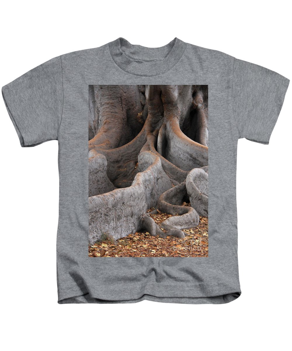 Moreton Bay Fig Tree Kids T-Shirt featuring the photograph Roots Of The Fig by Suzanne Oesterling