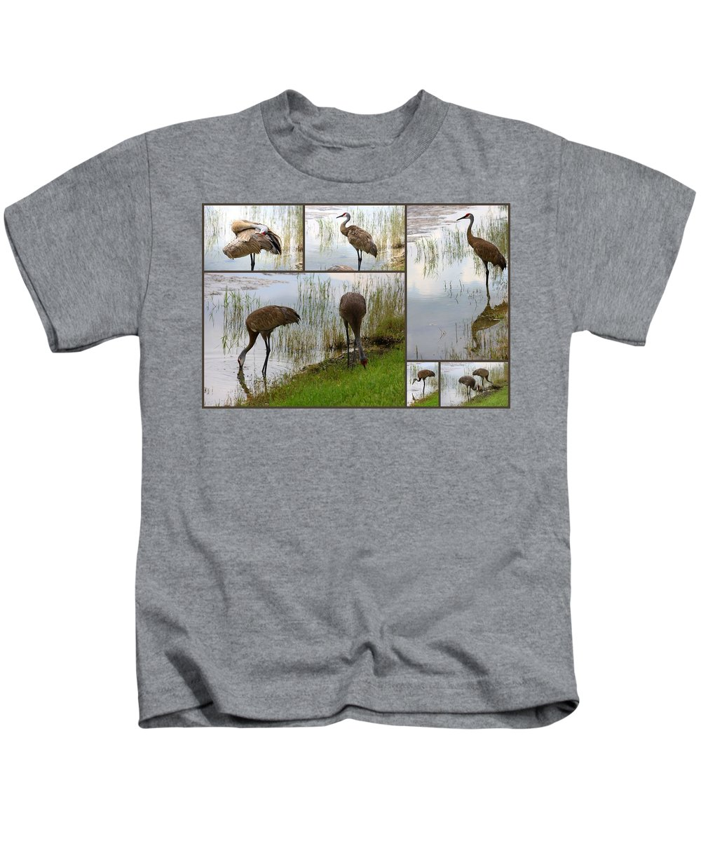 Bird Kids T-Shirt featuring the photograph Sandhills At The Pond Collage by Carol Groenen