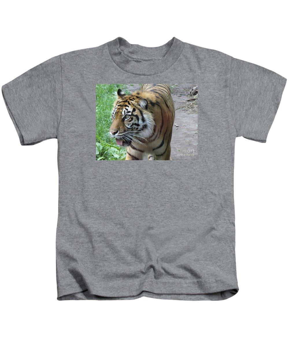 Animal Kids T-Shirt featuring the photograph Siberian Tiger by Lingfai Leung