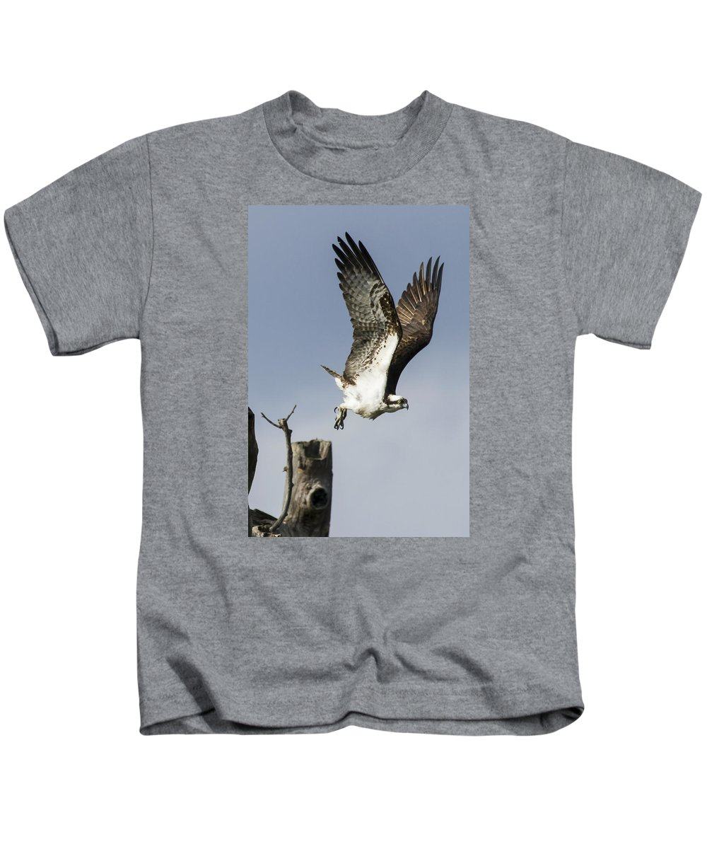 Osprey Kids T-Shirt featuring the photograph Sky Hunter by David Lester