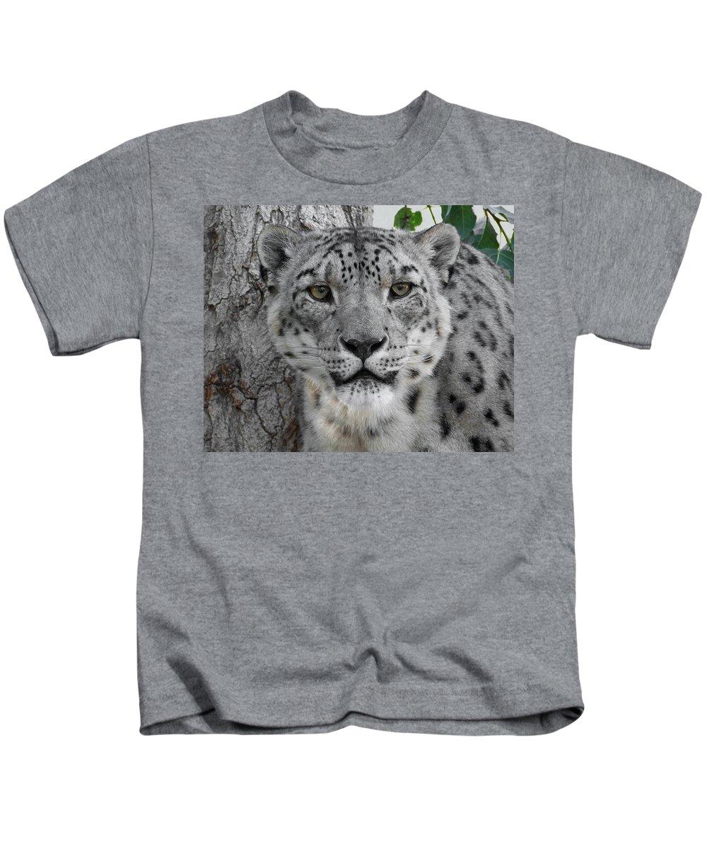 Animals Kids T-Shirt featuring the photograph Snow Leopard 5 by Ernie Echols