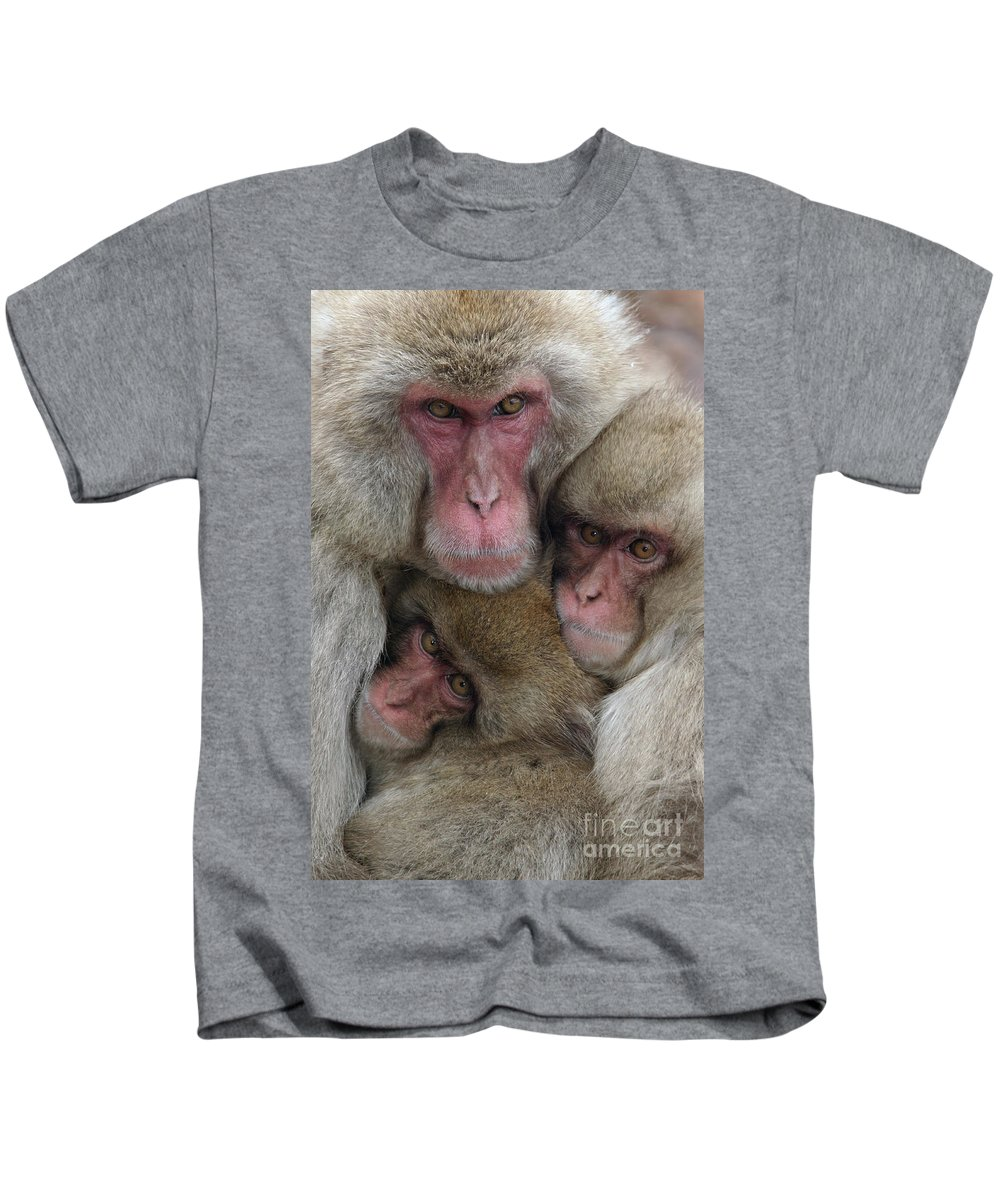 Japanese Macaque Kids T-Shirt featuring the photograph Snow Monkey And Young by Jean-Louis Klein and Marie-Luce Hubert