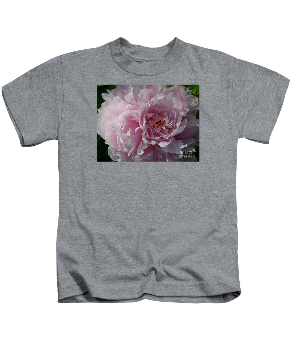 European Peony Kids T-Shirt featuring the photograph Soft Shades by Christiane Schulze Art And Photography