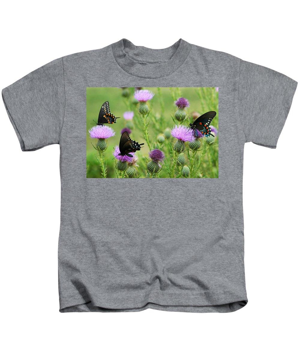 Papilio Troilus Kids T-Shirt featuring the photograph Spicebush Swallowtail Heaven by Kathy Clark