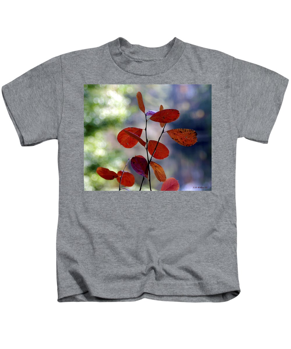 2d Kids T-Shirt featuring the photograph Summer's End by Brian Wallace