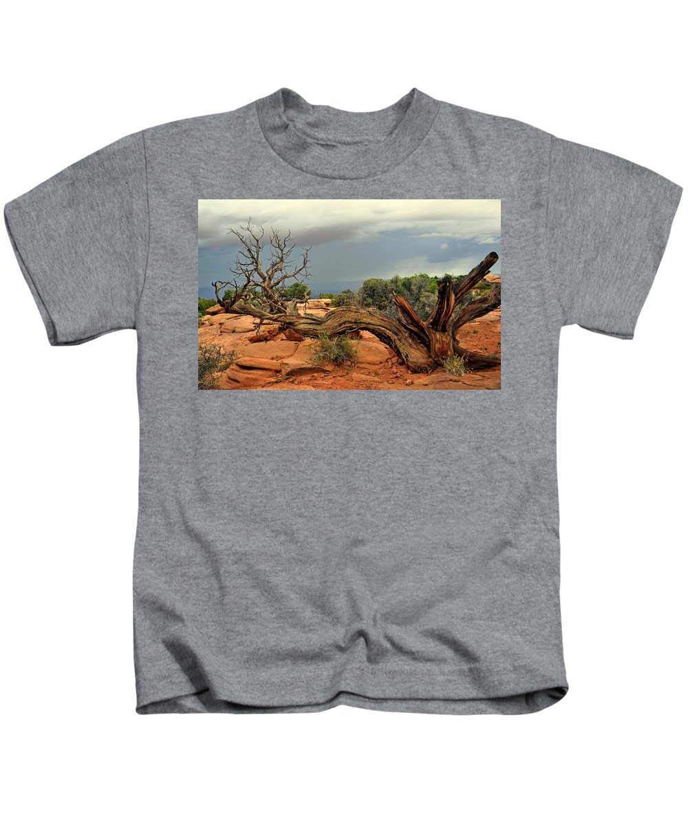 Ancient Kids T-Shirt featuring the photograph Survivor by Marty Koch