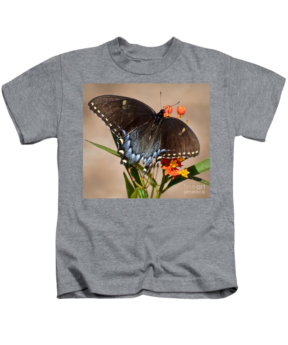 Butterfly Kids T-Shirt featuring the photograph Tattered Tails by Kerri Farley