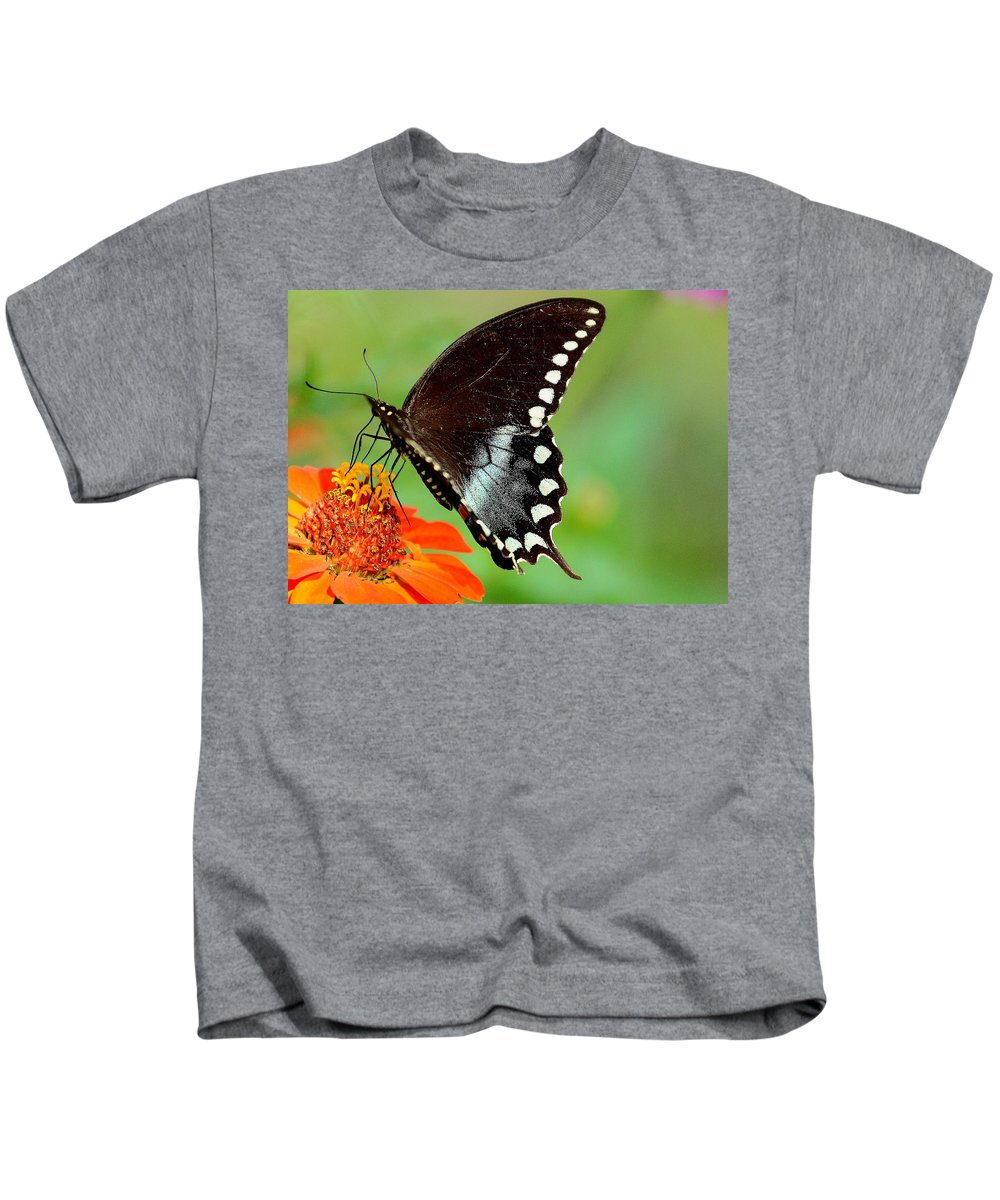 Butterfly Kids T-Shirt featuring the photograph The Butterfly And The Zinnia by Karen Beasley