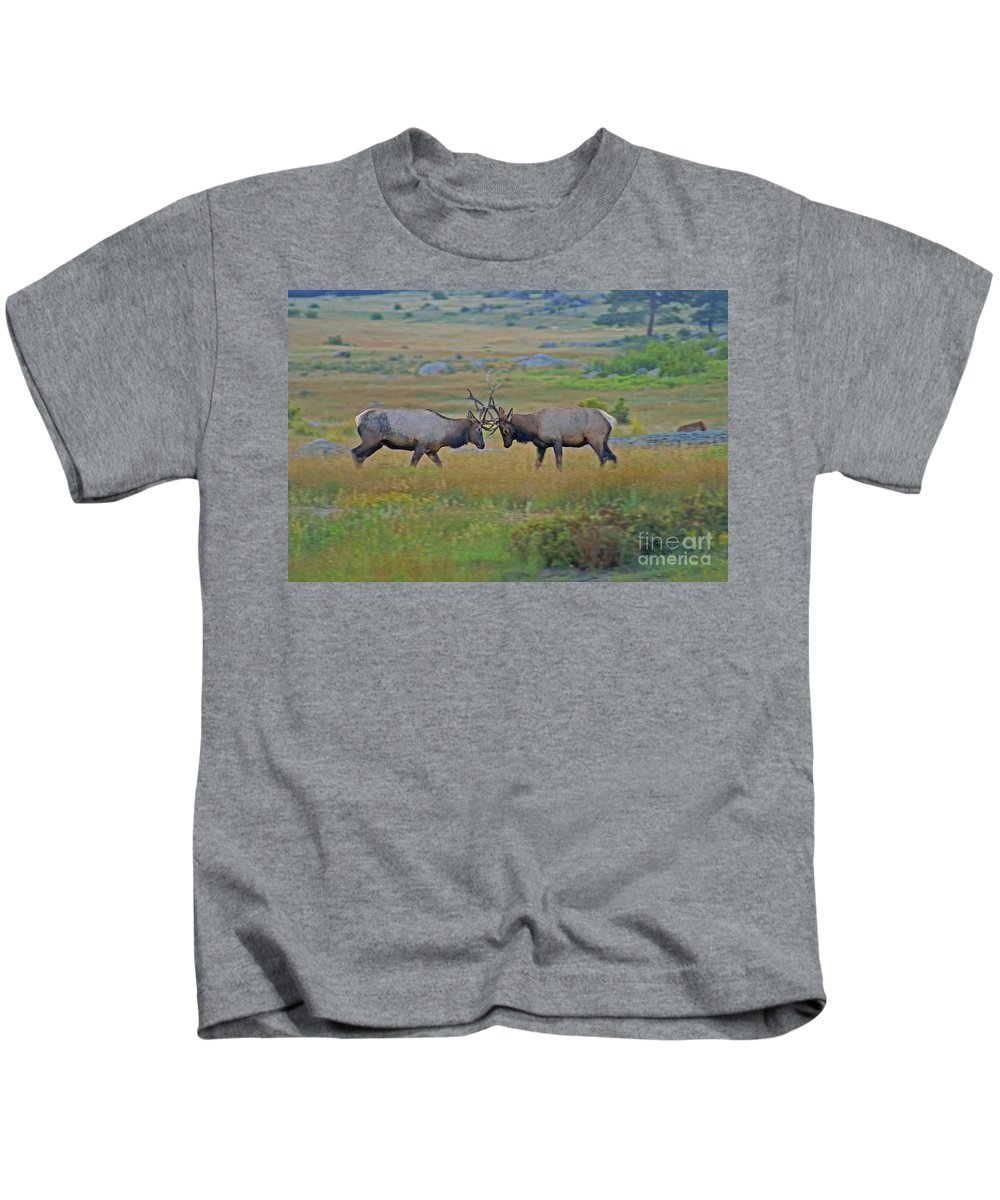 Elk Kids T-Shirt featuring the photograph The Challenge by Kelly Black
