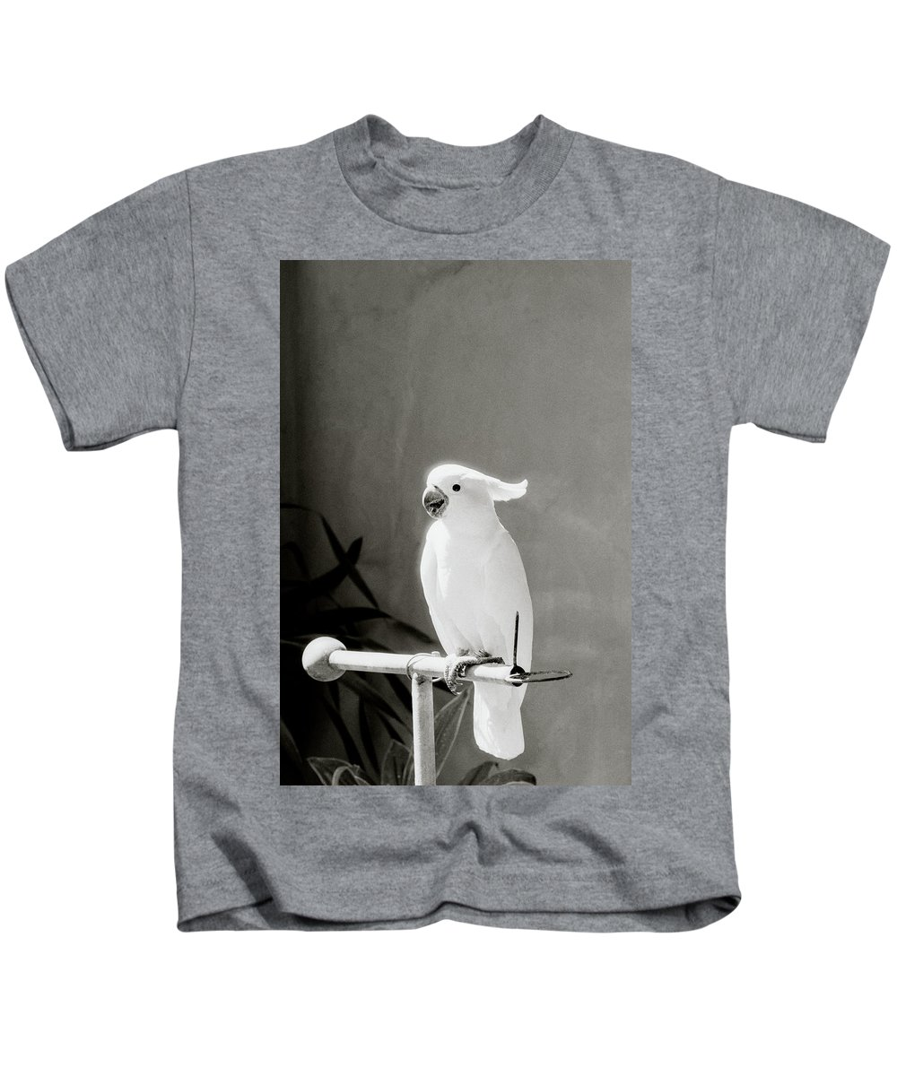 Bali Kids T-Shirt featuring the photograph The Cockatoo by Shaun Higson