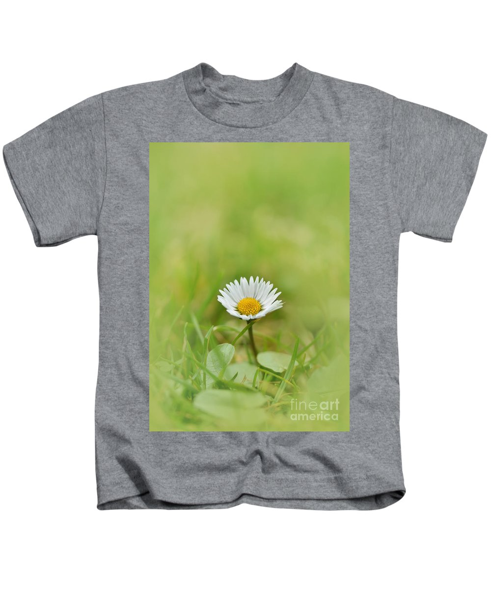 Single Kids T-Shirt featuring the photograph The First White Daisy by Jaroslaw Blaminsky