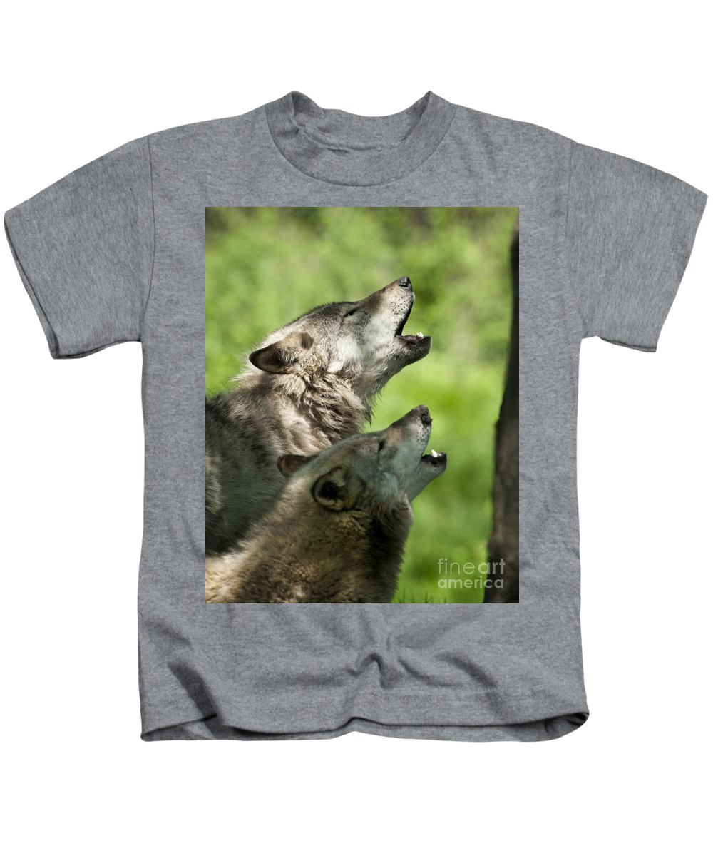 Timber Wolf Photography Kids T-Shirt featuring the photograph The Howling by Wolves Only