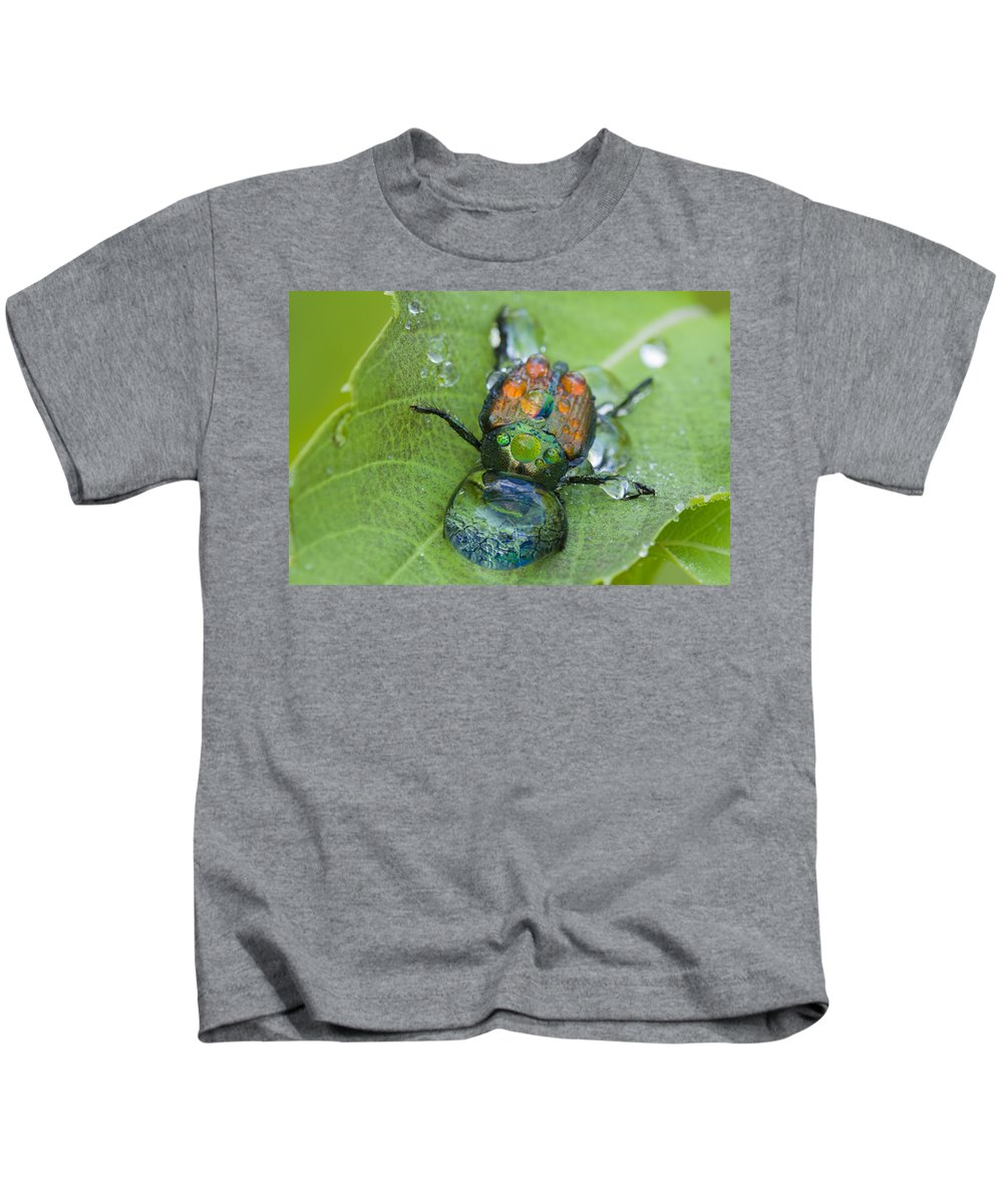 Background Kids T-Shirt featuring the photograph Thirsty Beetle by Mircea Costina Photography